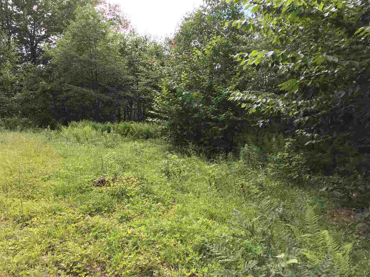 Lempster NH 03605 Land  for sale $List Price is $22,500