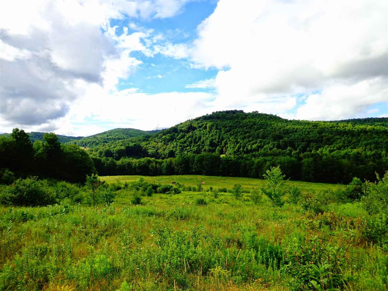 Pomfret VT Land  for sale $List Price is $150,000