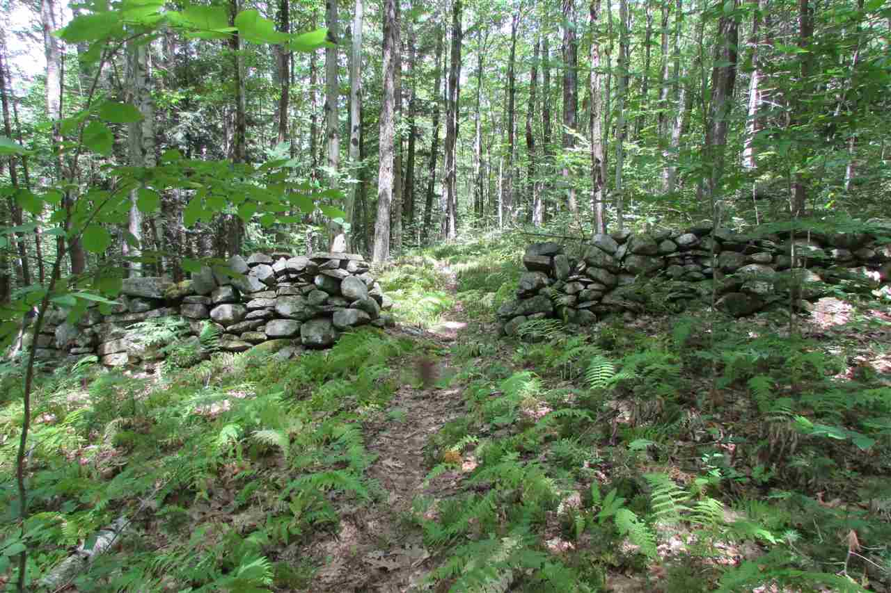 Norwich VT 05055Land for sale $List Price is $135,000