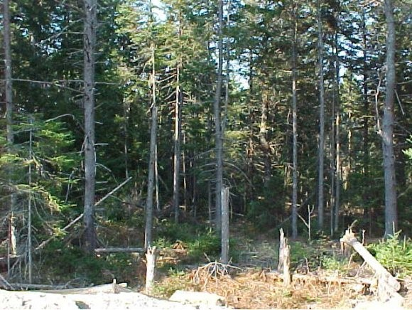 CANAAN NHLAND  for sale $$44,900 | 2.19 Acres  | Price Per Acre $0  | Total Lots 2