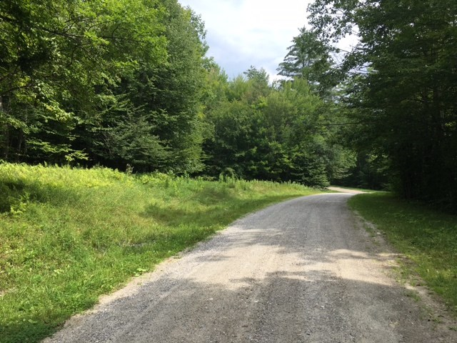 Plymouth VT Land  for sale $List Price is $19,900