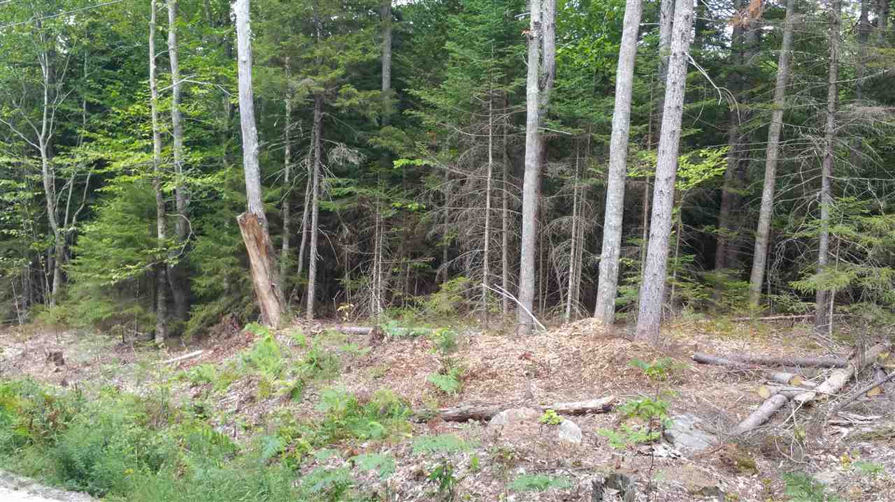 Washington NH 03280 Land for sale $List Price is $19,900
