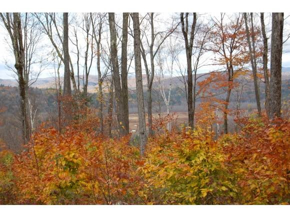 DANBURY NH LAND  for sale $$179,000 | 71 Acres  | Price Per Acre $0