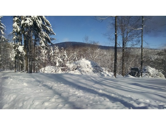 Plymouth VT Land  for sale $List Price is $55,900