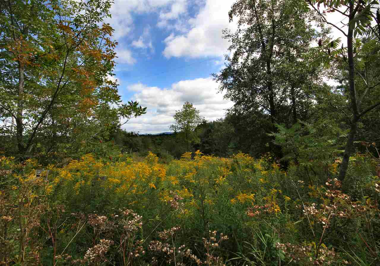Unique opportunity to purchase an undeveloped 40.25 acre parcel of land with 1930+/- feet of Otter Creek River frontage of Morgan Horse Farm Road in Weybridge, Vermont. Property is bordered on the south by the Otter Creek Gorge Preserve.