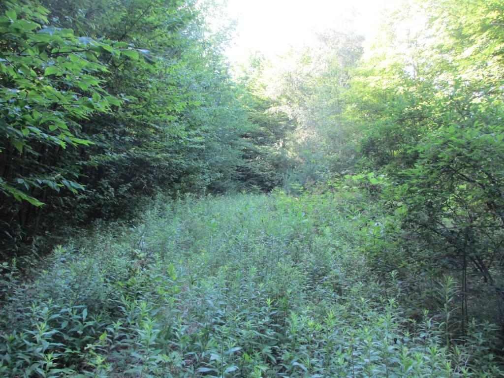 Hartland VT Land  for sale $List Price is $59,000