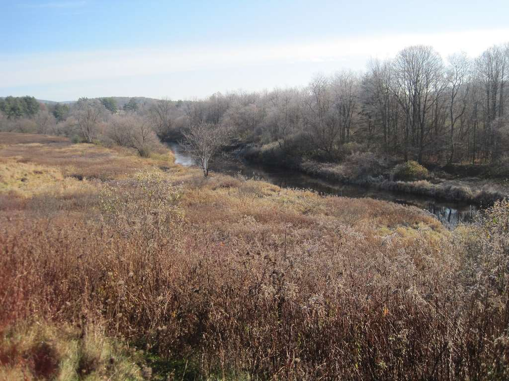 Common Land Along River