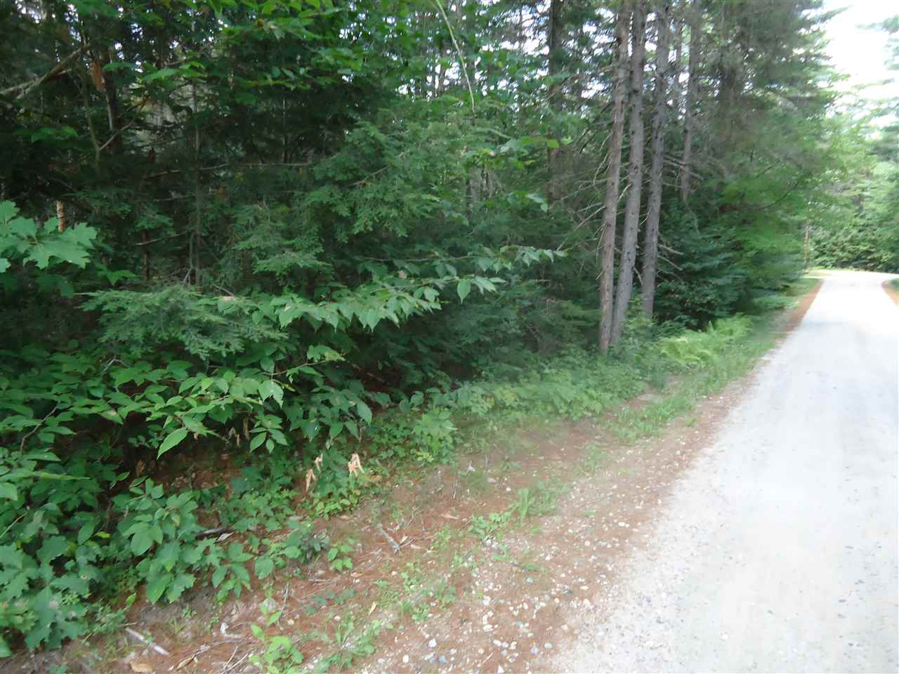 DANBURY NH Land / Acres for sale