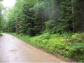 VILLAGE OF GILMANTON IRON WORKS IN TOWN OF GILMANTON NH LAND  for sale $39,000