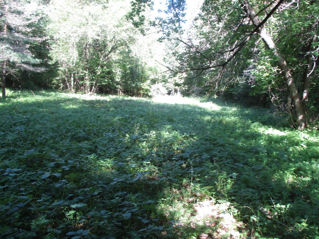 RANDOLPH VT LAND  for sale $$49,000 | 1.8 Acres  | Price Per Acre $0  | Total Lots 5