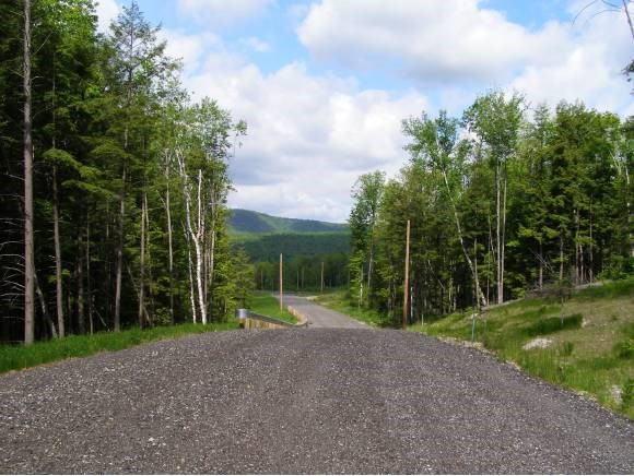 CANAAN NH LAND  for sale $$299,000 | 27.35 Acres  | Price Per Acre $0