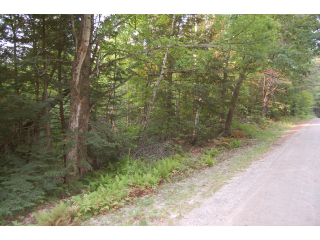 Goshen NH 03751 Land  for sale $List Price is $99,000