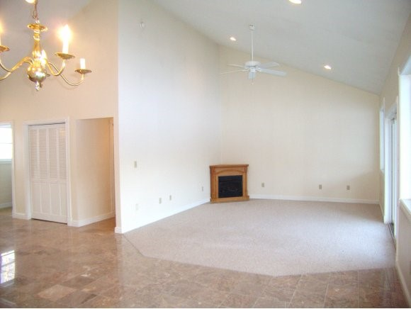 Open concept gas fireplace 11135488
