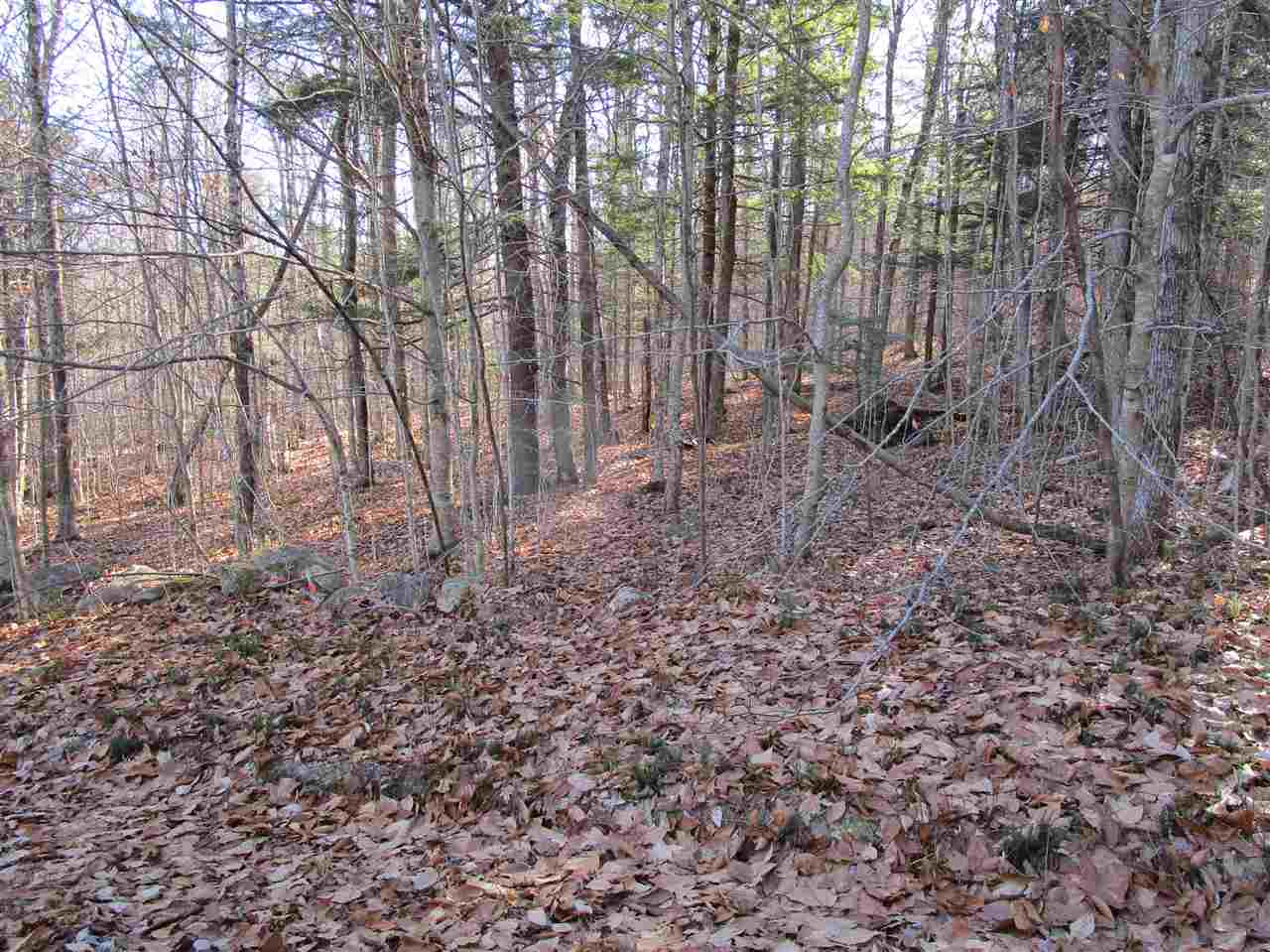 DANBURY NH LAND  for sale $$129,900 | 21.4 Acres  | Price Per Acre $0  | Total Lots 3