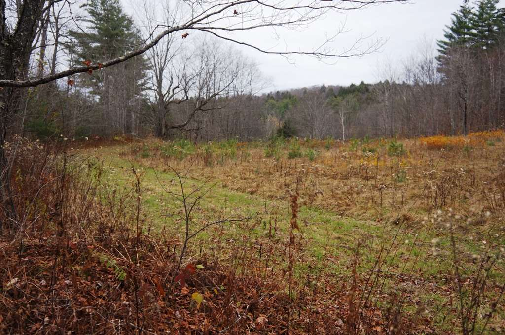 ALSTEAD NH LAND  for sale $$74,900 | 5.57 Acres  | Price Per Acre $0
