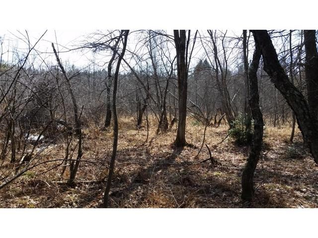 GRAFTON NH LAND  for sale $$105,000 | 61.3 Acres  | Price Per Acre $0