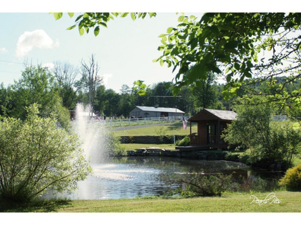 2nd pond 11232362