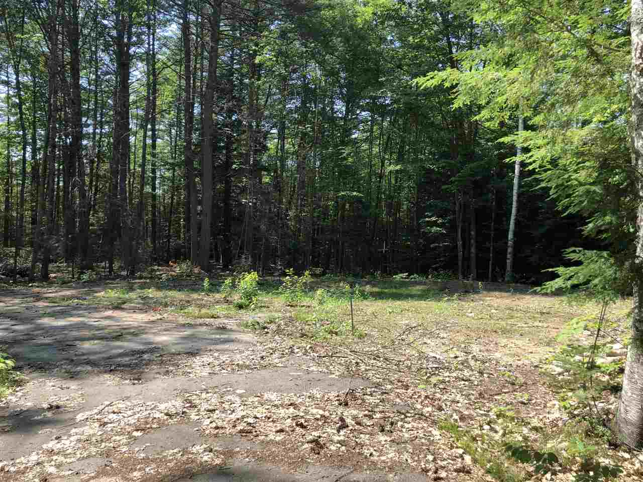 VILLAGE OF CENTER OSSIPEE IN TOWN OF OSSIPEE NH  LAND  for sale $39,900