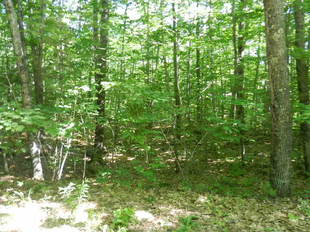 Washington NH 03280 Land for sale $List Price is $13,000