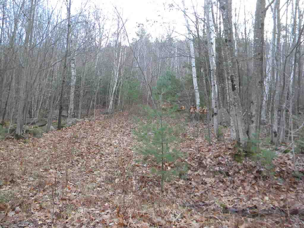 Lempster NH 03605 Land for sale $List Price is $29,900