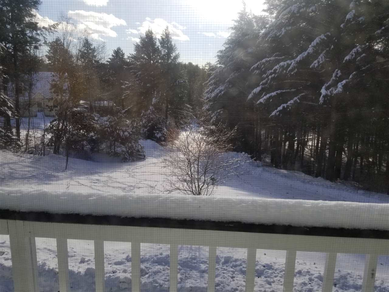 View from front deck 11300803