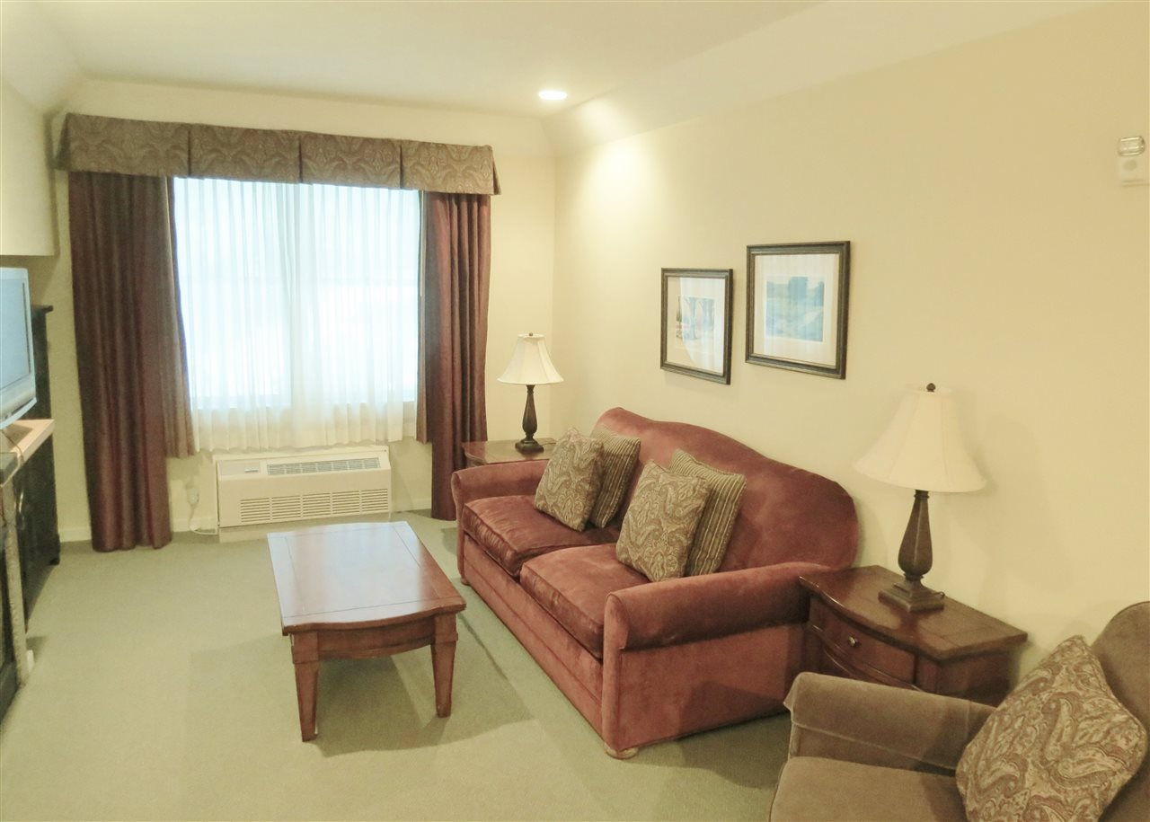 Living Room 11307303