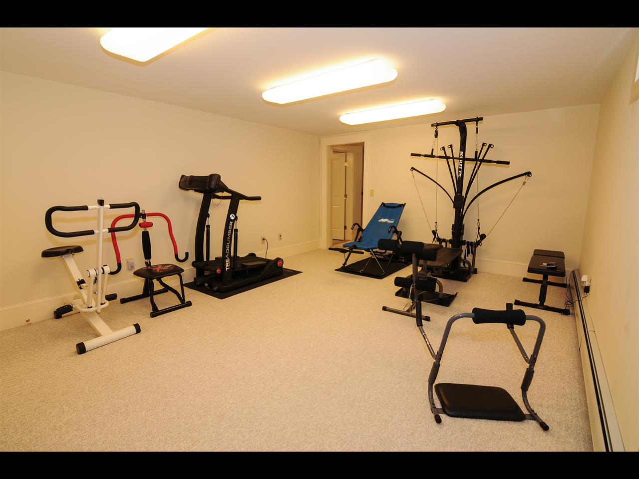 Lower level exercise room 11319845