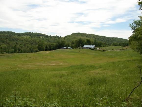 Hay field 11330312