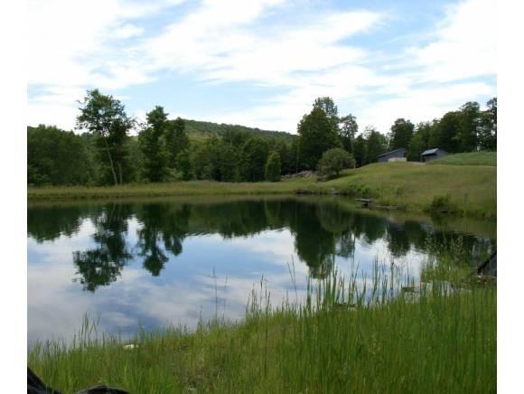 Pond 11330314
