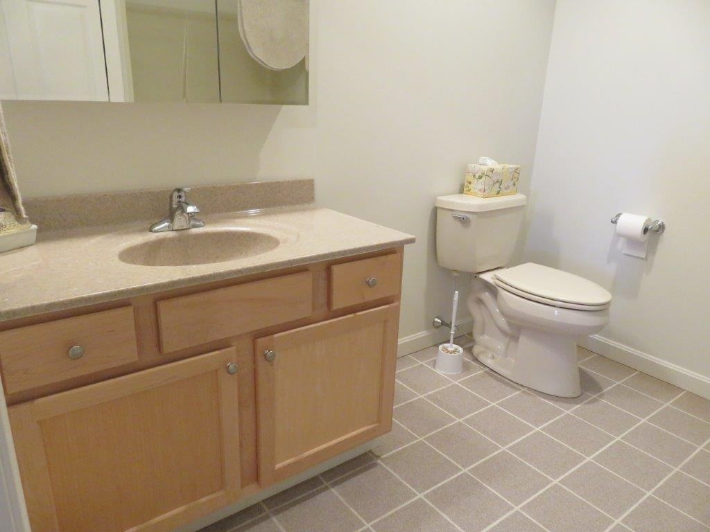 Full Bath In Walk Out Basement 11332459