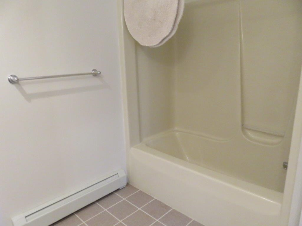 Full Bath In Walk Out Basement 11332460