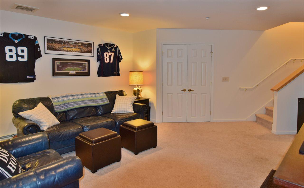 Lower Level Family Room 11337183