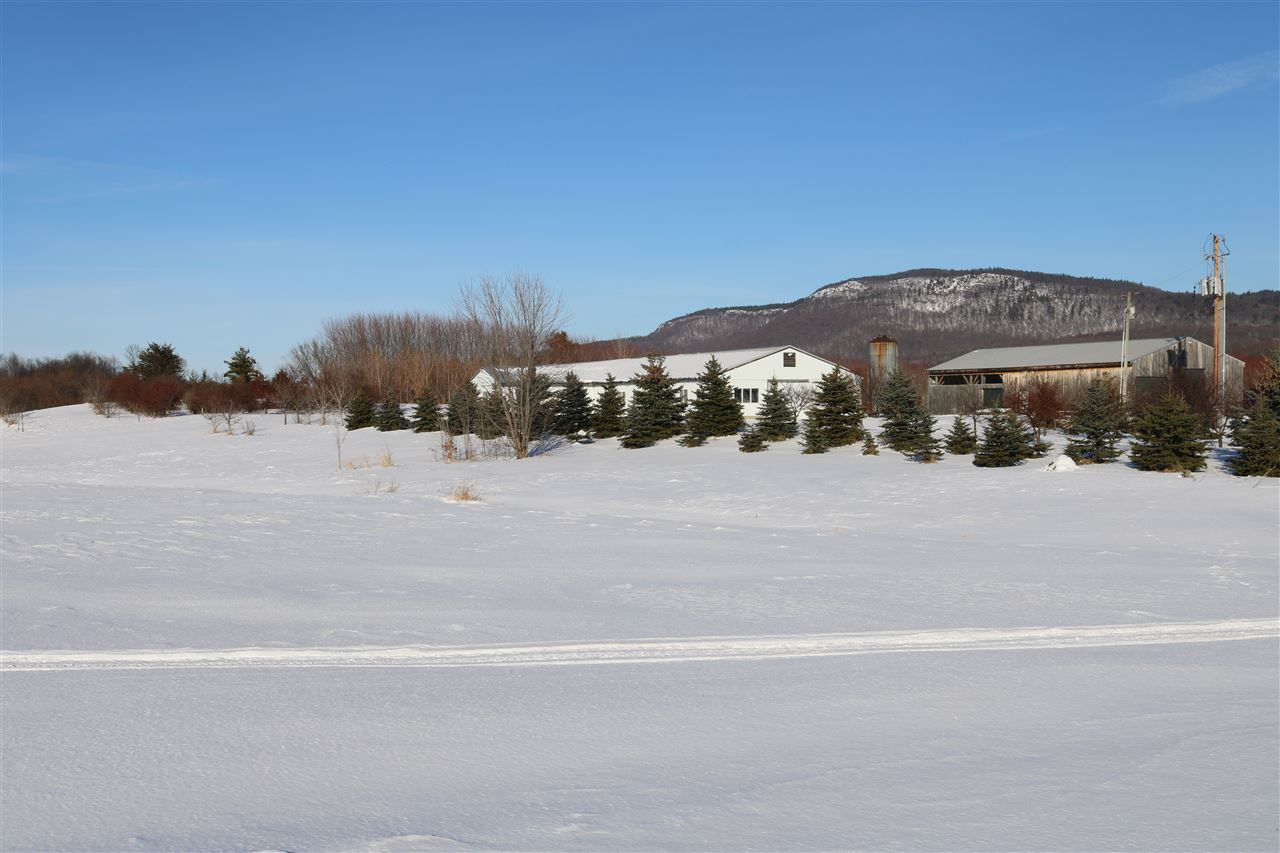 What a setting! This property has extraordinary Adirondack Mountain views to the west and Snake Mountain as it's backdrop to the east. Located in the heart of the Champlain Valley, this previous dairy farm has been completely  transformed with trees. There are currently about 2000 silver maple trees along with hard sugar maples, some are ready to be tapped. There are also between 2500-3000 walnut trees that are currently about 20 years old. With these views, the ridge of this property would make an amazing building site.  Two large barns on site one is about 6000 square feet and the other approximately 3000 square feet, great place to start a small farm and lots of storage for equipment. There is also a deep pond to stock fish in!