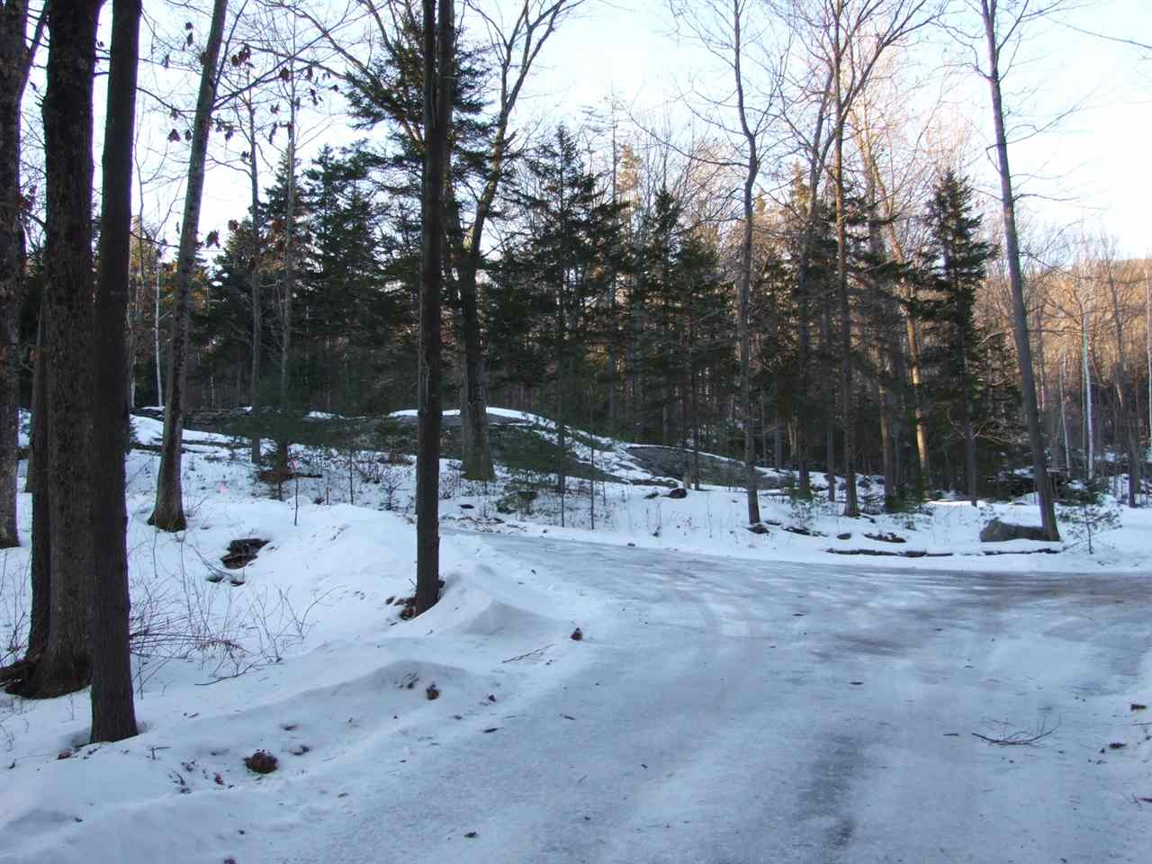 Wooded setting 11389656