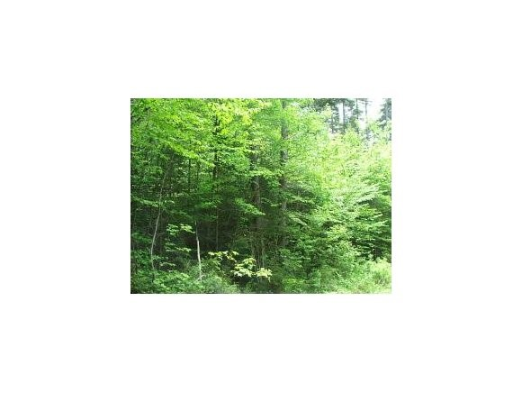 Washington NH 03280 Land for sale $List Price is $19,000