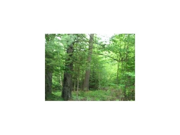 Washington NH 03280 Land for sale $List Price is $16,500