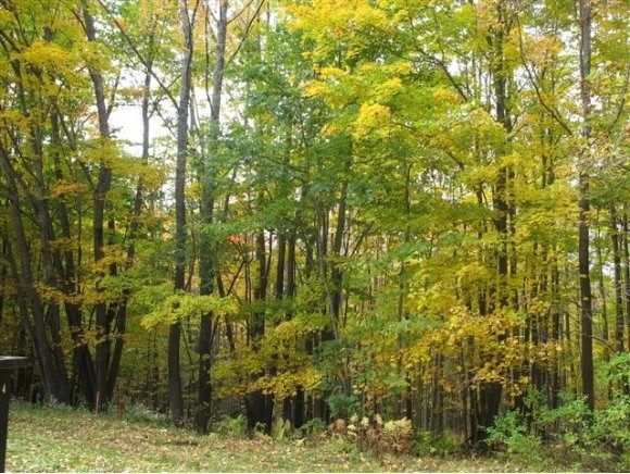 LEBANON NH Land  for sale $$89,000 | 1.89 Acres  | Price Per Acre $0