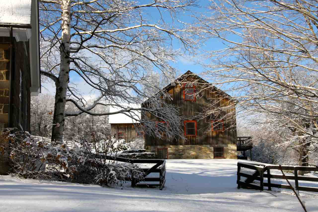 Guest Barn and Horse Barn 11390074