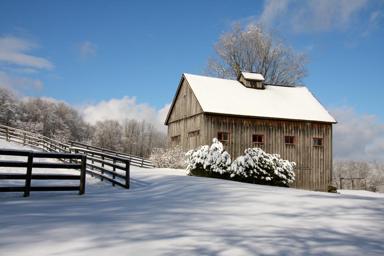 5 Stall Horse Barn 11390076