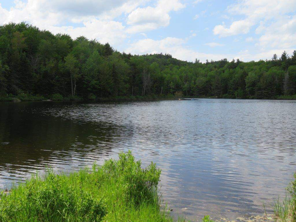 GRAFTON NH LAND  for sale $$58,000 | 1.07 Acres  | Price Per Acre $0  | Total Lots 2