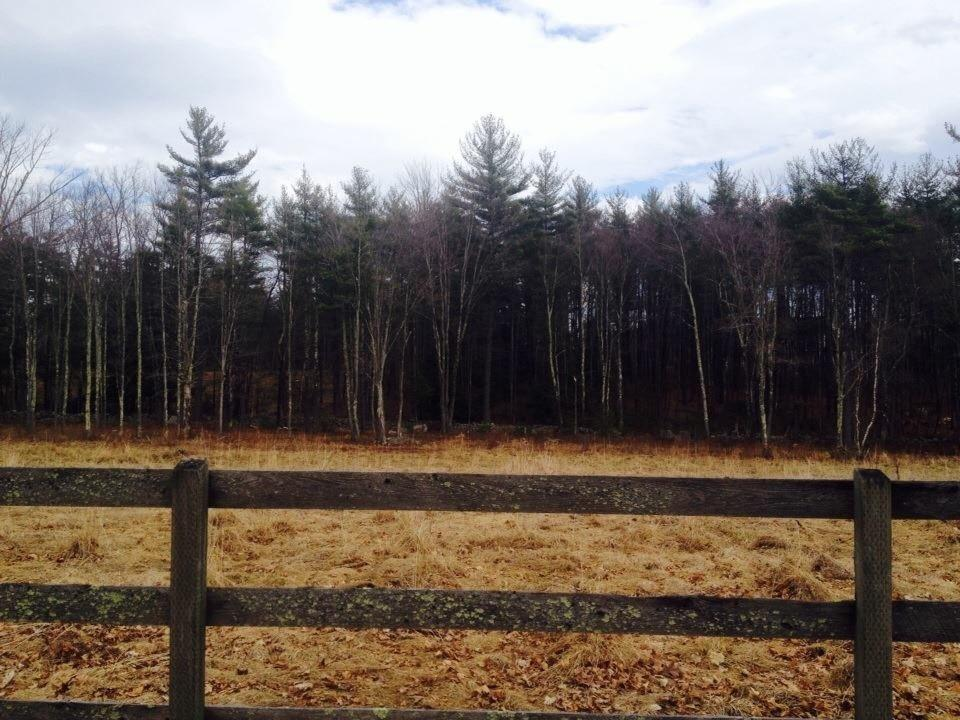 Milford NH Land  for sale $List Price is $119,500