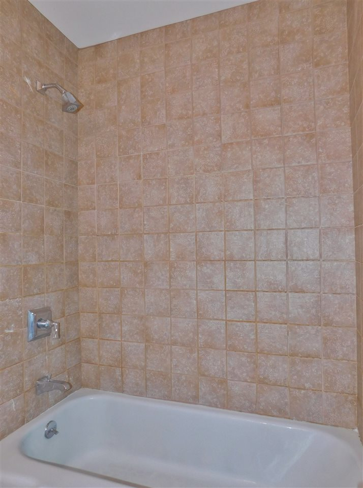 Full Tub and Shower 11410694
