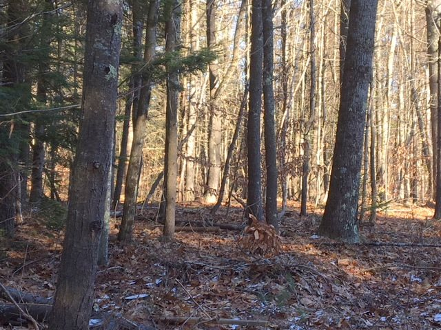 TUFTONBORO NH Land / Acres for sale