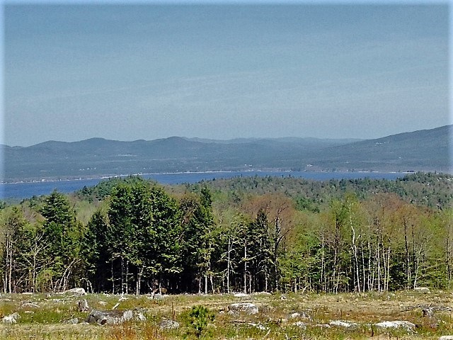 OSSIPEE NH  LAND  for sale $224,900