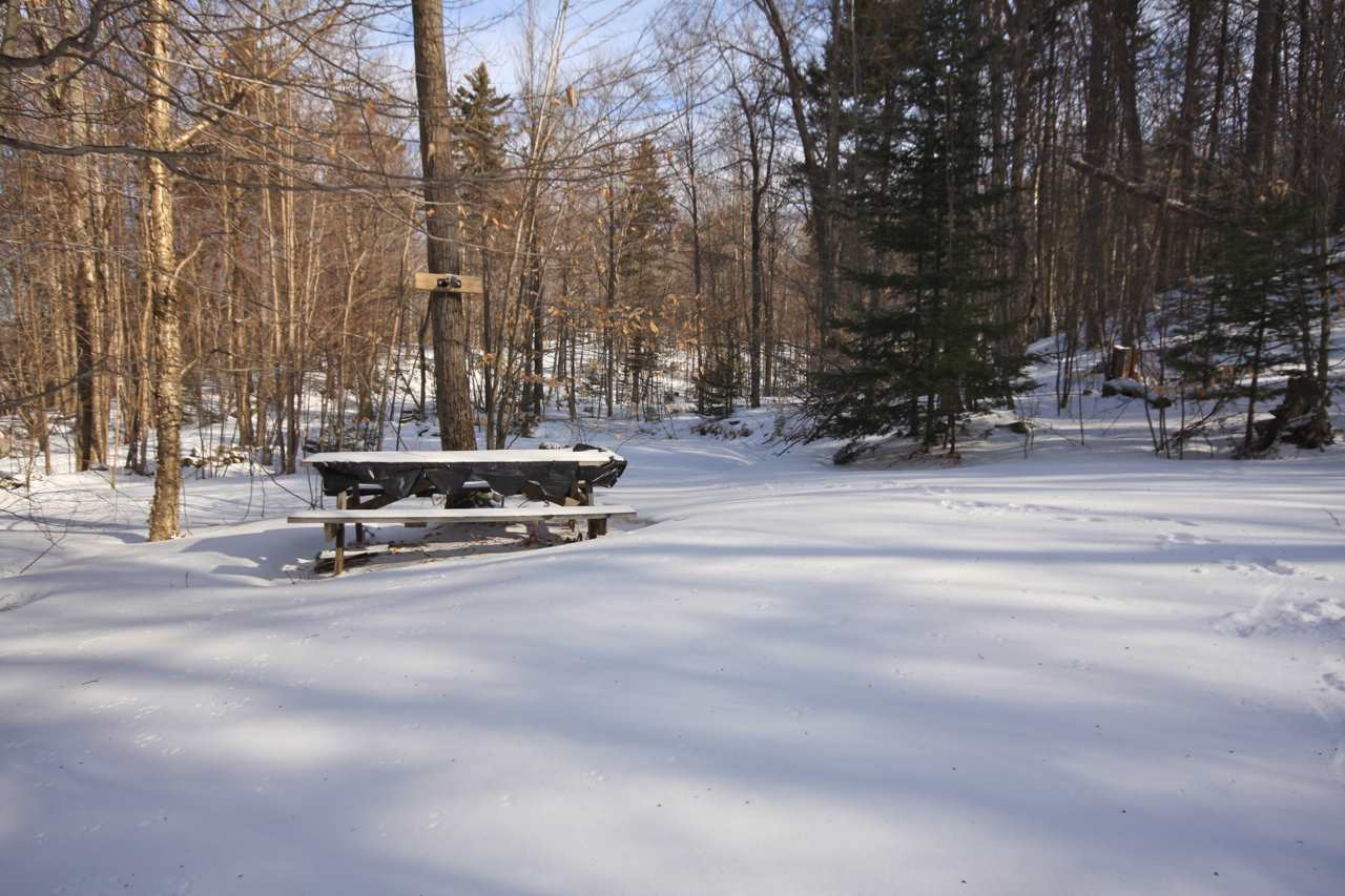 BARNARD VT LAND  for sale $$25,000 | 11.7 Acres  | Price Per Acre $0