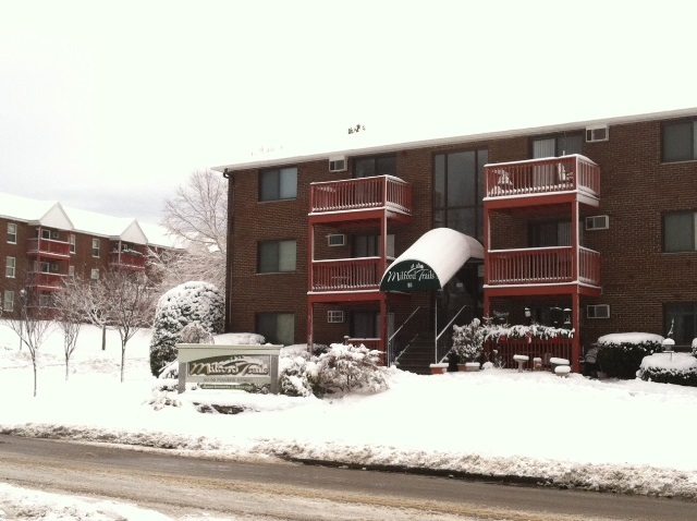 MILFORD NH Apartment for rent $Apartment For Lease: $869 with Lease Term