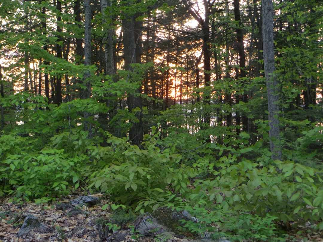 MEREDITH NH LAND  for sale $750,000