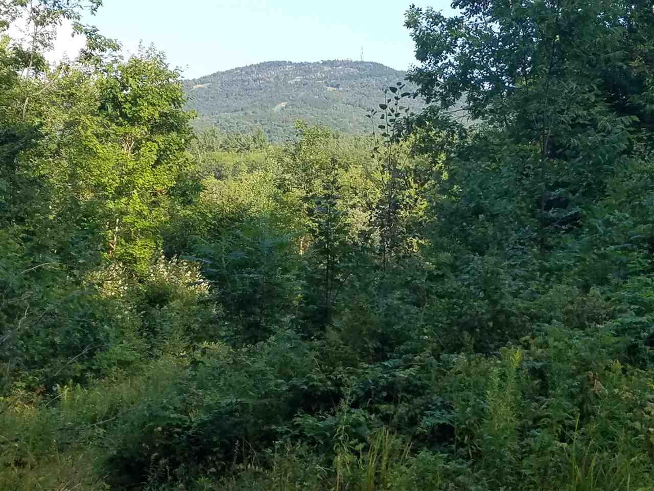 GOSHEN NH LAND  for sale $$59,000 | 5 Acres  | Price Per Acre $0