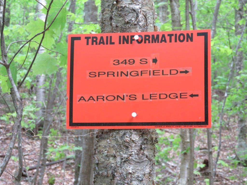 Across the road, get on the trail 11493580