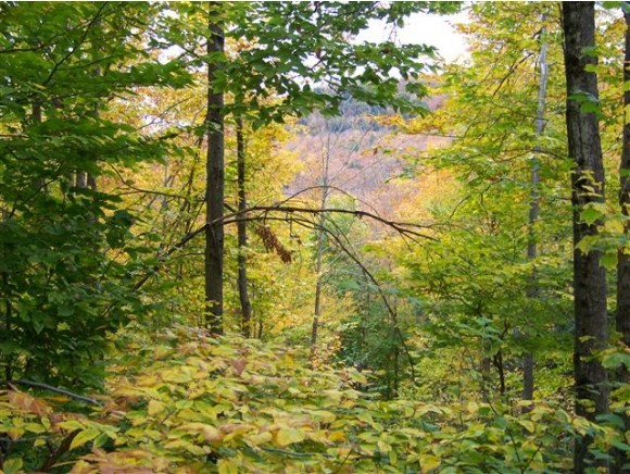 BARNARD VT LAND  for sale $$70,000 | 33.8 Acres  | Price Per Acre $0